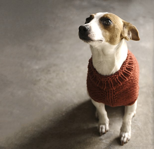 Knit With Alice The Juno Jumper Loveknitting